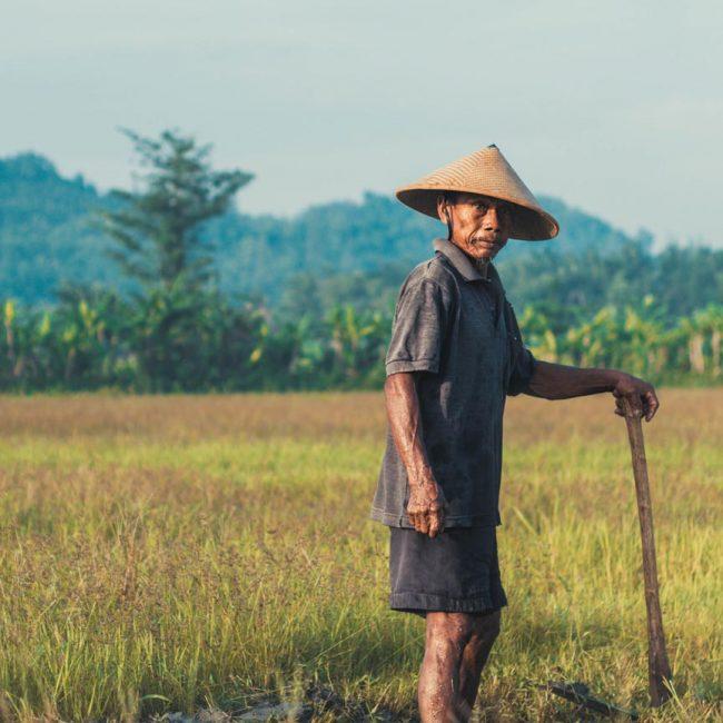 Indonesia-01