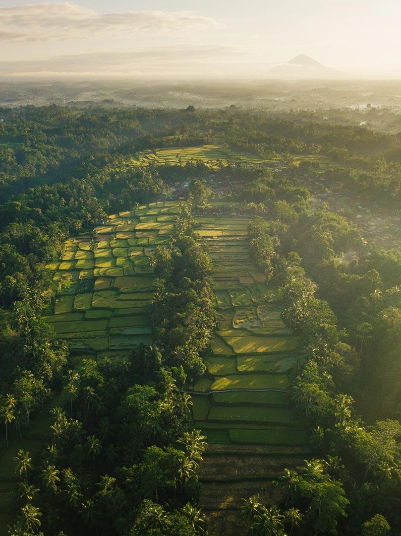 Indonesia-04